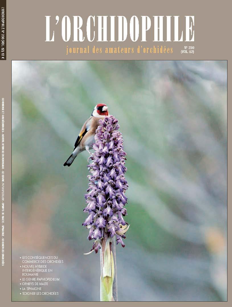 Couverture L'Orchidophile n°230