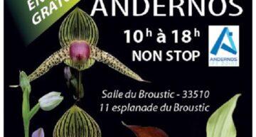 Exposition d'orchidées à Andernos du 8 au 10 octobre 2021