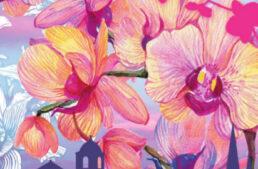15 ème festival international – orchidées à Fontfroide du 1 au 3 octobre 2021